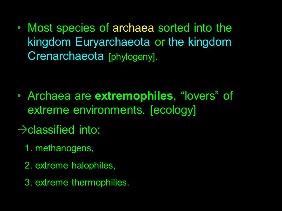 Archaea are extremophiles, lovers of extreme environments. [ecology]